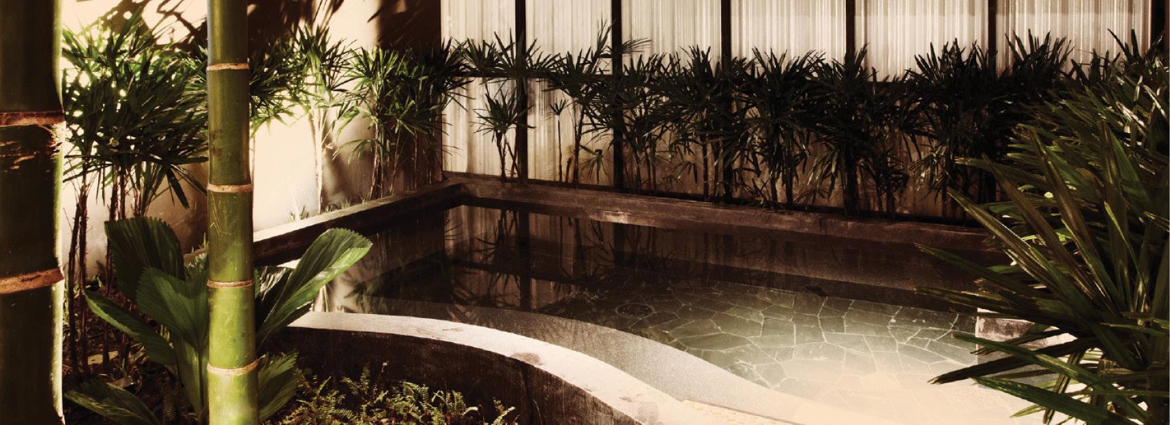 Fine Japanese Spas Inspiration - Bathroom and Shower Ideas ...