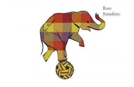 Image: Rare Samshiro NFT via Jim Thompson / Heart Media Group