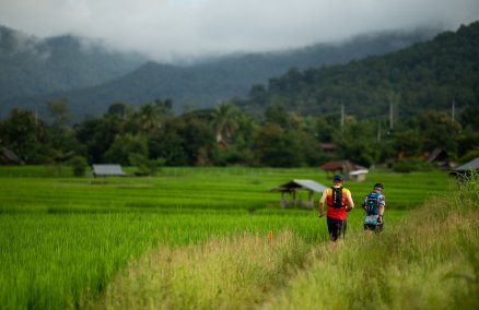 Run around the rice paddies in Pai this January