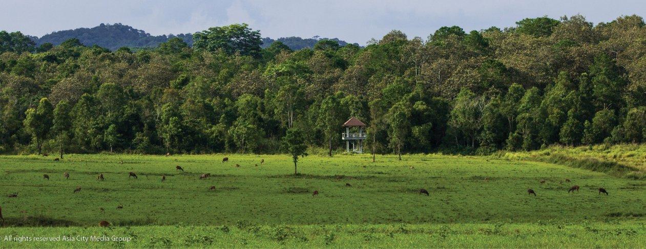 Phu Khiao Wildlife Sanctuary