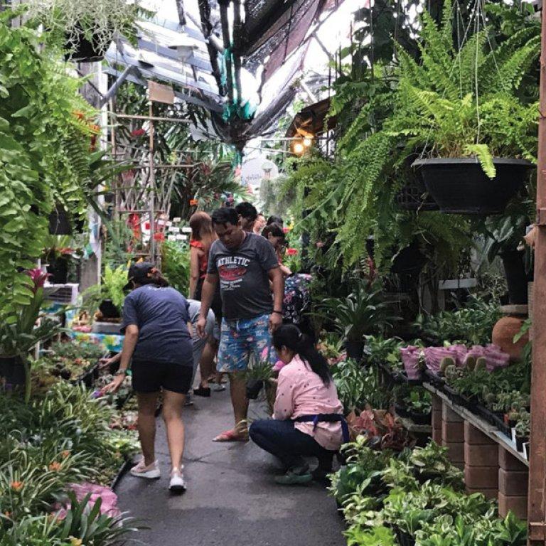 Thonburi Market Sanam Luang 2