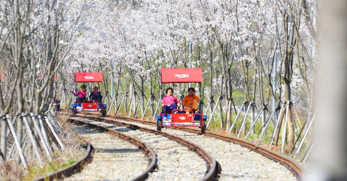The Beginner S Guide To Rail Biking In South Korea Bk