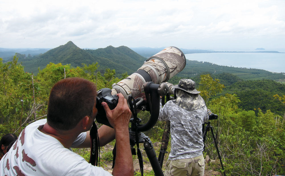 Raptor watching at Khao Dinsor